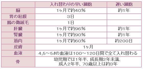 ファイル 16-4.jpg